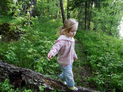 Ein Kind entdeckt den Wald.
